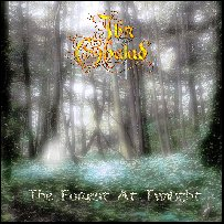 Demo-CD: The Forest at Twilight